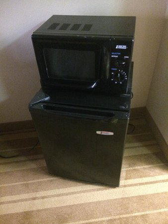 Roomba Inn & Suites Orlando: Fridge&microwave