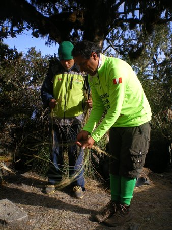 Alpaca Expeditions: Ruben making rope from grasses...