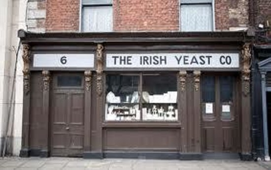 The Irish Yeast Company