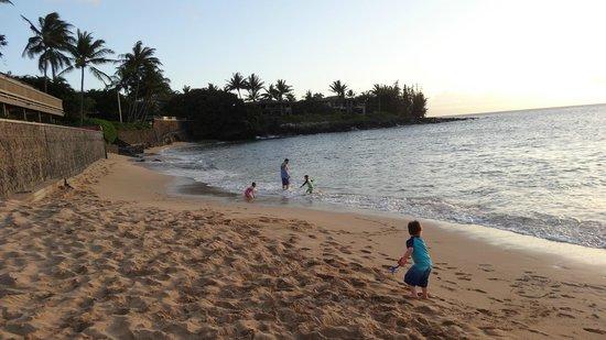 Kahana Sunset: beach