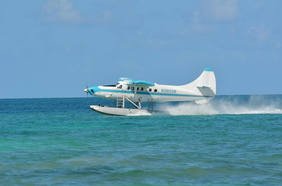 Key West Seaplane Adventures: Seaplanes!