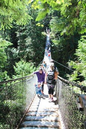 Lynn Canyon Park : Lynn Canyon Suspension Bridge