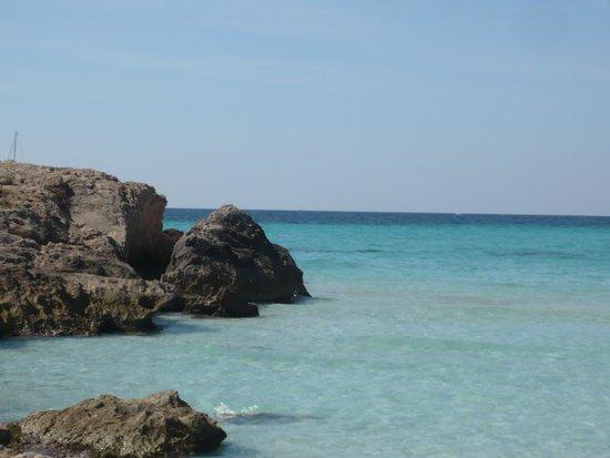 Playa de Es Trenc: playa 4