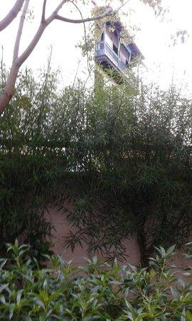 Don Manolito Hotel: Widok z okna