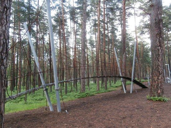 Dzintari Forest Park: Park