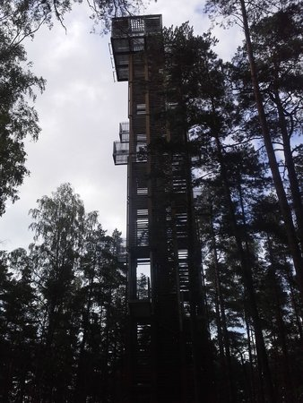 Dzintari Forest Park: Observation tower