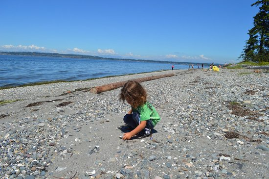 """Birch Bay State Park: rock """"heaven for the little one"""