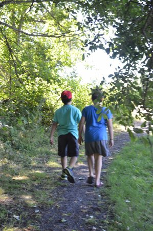 Birch Bay State Park: going into one of the many trails....