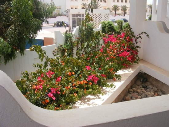 Iberostar Founty Beach: Na balkonie