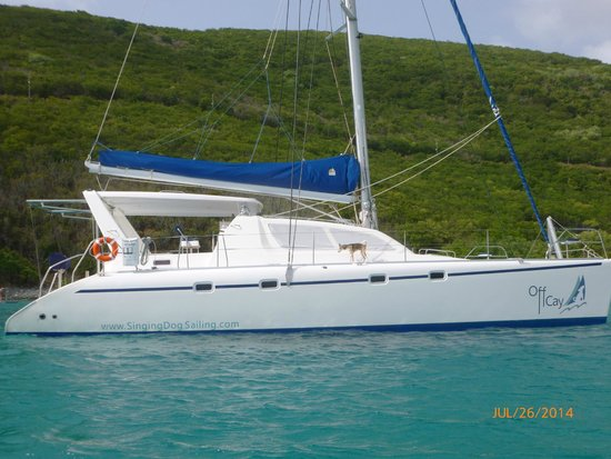 Singing Dog Sailing: Magnificent!!!