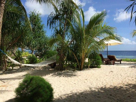 Wakatobi Dive Resort : Beach Bungalow Nr. 5 - Garten