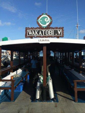 Wakatobi Dive Resort : Tauchen