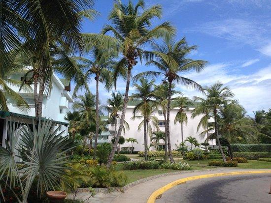 Isla Caribe Beach Hotel: Blaque de habitaciones que dan a la piscina principal