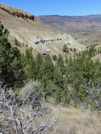 John Day Fossil Beds National Monument: Hiking trail view