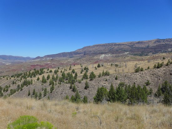 John Day Fossil Beds National Monument: John Day Fossil Beds