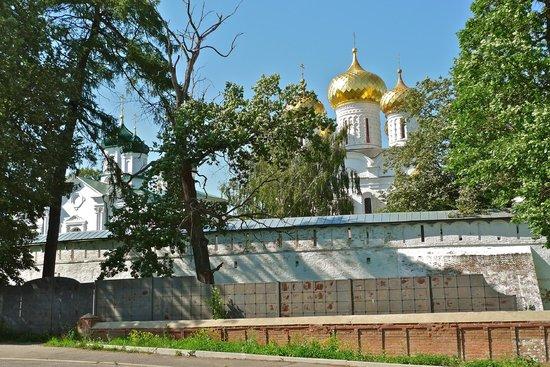 Monastery of st Ipaty: Купола монастыря за оградой. Вид с набережной реки Костромы