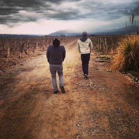 Ampora Wine Tours: Lujan de Cuyo Wine Tour