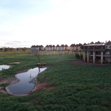 Sarova Salt Lick Game Lodge: Hotel and grounds