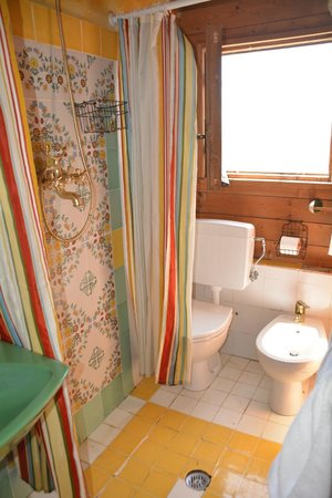 La Fornacina Country House: toilet in shower or vice versa