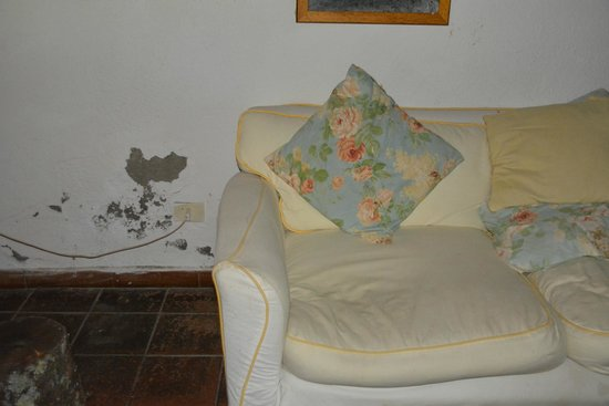 La Fornacina Country House: Not inviting living area: dirty, stained or torn furniture