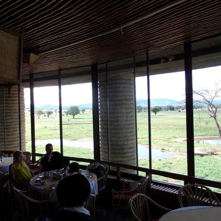 Sarova Salt Lick Game Lodge: View from restaurant