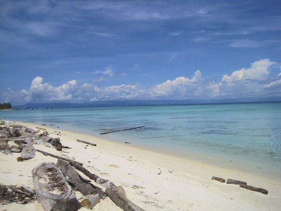 Mantanani Island: Beach