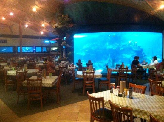 Dillon's KC BBQ: Huge shark tank in main dining room.
