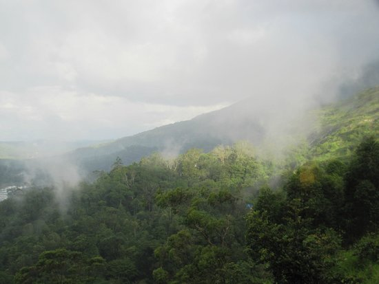 The Wind Munnar: View from balcony