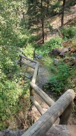 Kamloops Wildlife Park: The way down from the waterfall
