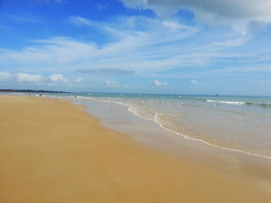 Barra Beach: How's this for endless beauty