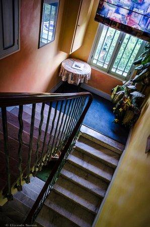 Hotel Miramar : лестница