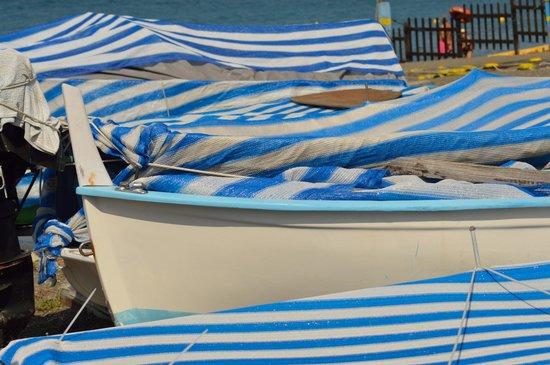 Hotel La Scogliera: Barche ormeggiate