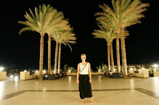 Cleopatra Luxury Resort Makadi Bay: palmy