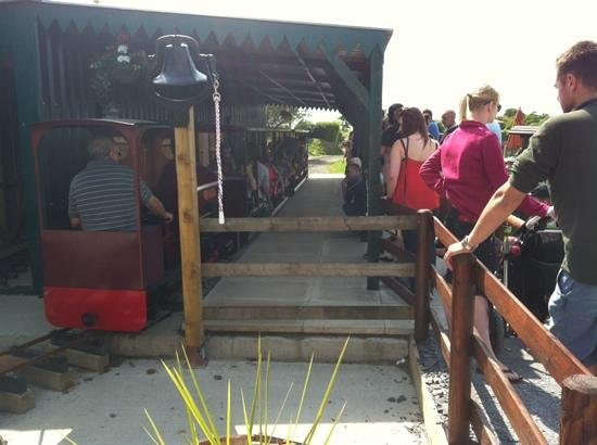 Gypsy Wood Park : The new train is a must for all ages