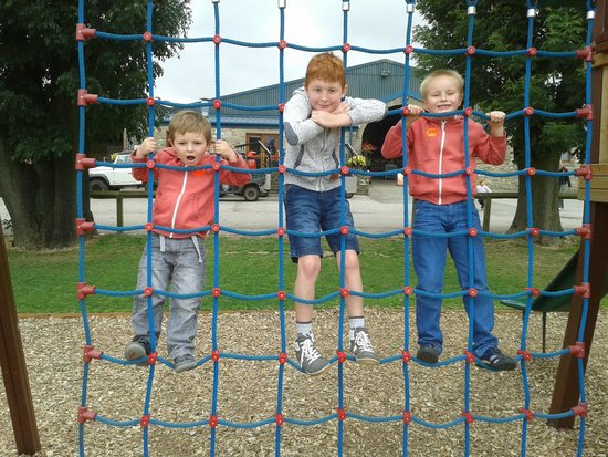 Thornton Hall Farm Country Park: boys will be boys