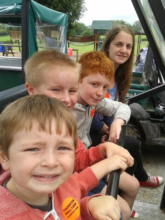 Thornton Hall Farm Country Park: off for a safari, value for money we were out 45 minutes
