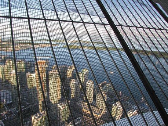 CN Tower: Vista
