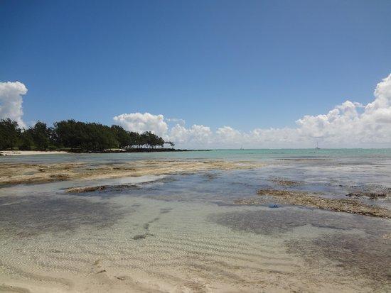 Anahita Golf & Spa Resort: Plage privée de l'Ile aux Cerfs