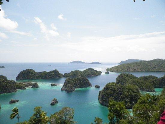 Raja Ampat Islands: atoll in pianemo