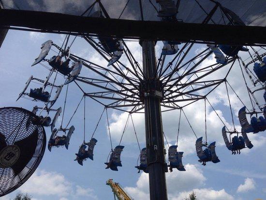 Wild Adventures Theme Park: Love it