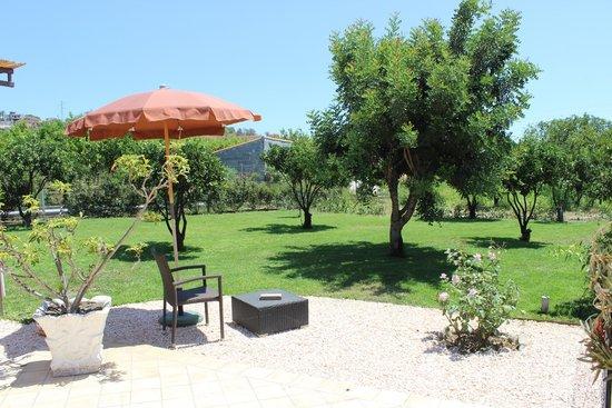 B&B Villa Valentina Taormina : giardinetto alberato