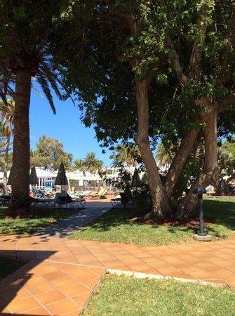 Apartamentos Barcarola Club: view from E4