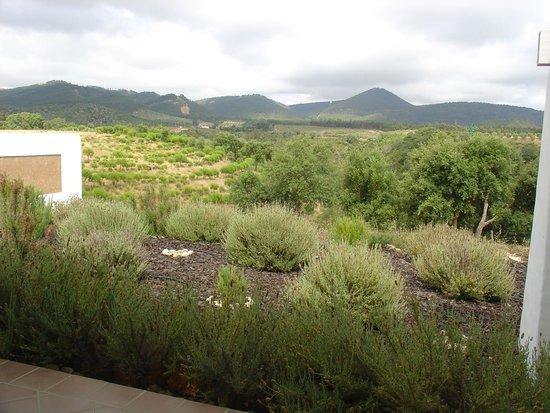 Herdade do Amarelo Nature & Spa: paisagem