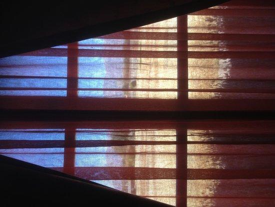 Patios de Cafayate Wine Hotel: Vista desde nuestra habitación