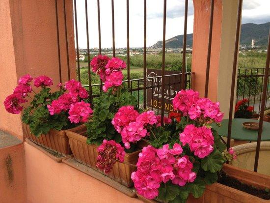 Il terrazzo con il gelsomino in fiore foto di giu al mulino b&b