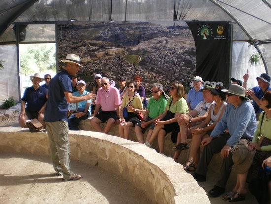 Danny the Digger: Temple Mount Sifting Project