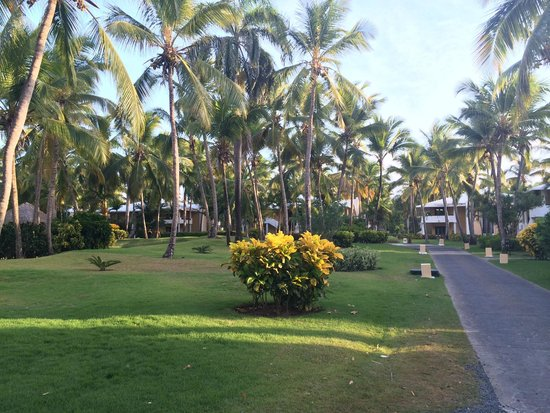 Bavaro Princess All Suites Resort, Spa & Casino: Jardins