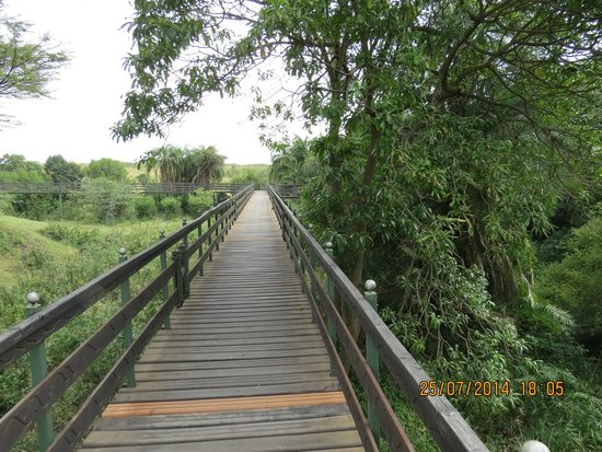Keekorok Lodge-Sun Africa Hotels: Bridge leading to the observation deck