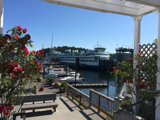 San Juan Outfitters - Day Tours: Friday Harbor