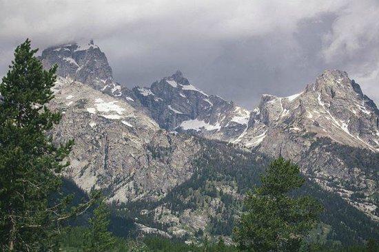 Wildlife Expeditions of Teton Science Schools: Grand Tetons